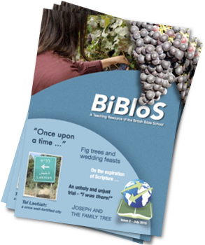 BiBloS 02-July 2015 homepage