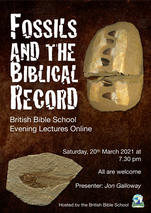 Fossils and the Biblical Record 300
